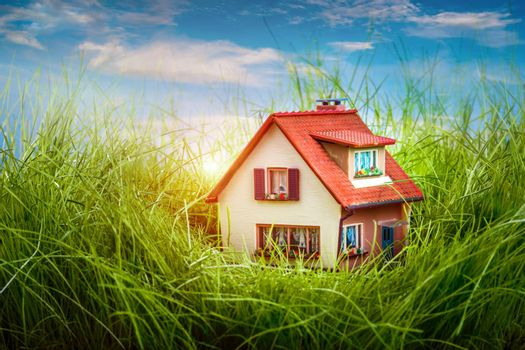 Little House on the green grass