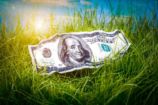 Hundred dollars in the green grass