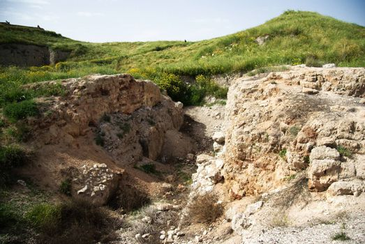 Archeology and history national park with spring landscape in Israel