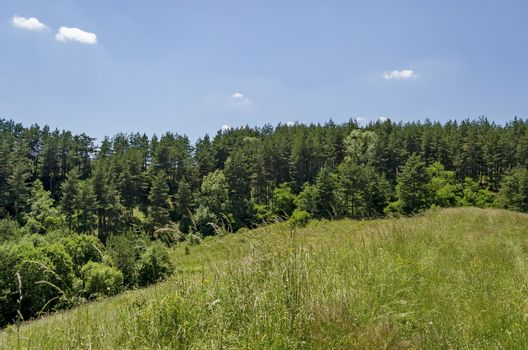 Background of sky, clouds, field  and forest, Plana mountain, Bulgaria