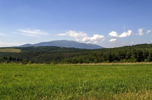 Background of sky, clouds, field, mountain  and forest, Plana mountain, Vitosha, Bulgaria