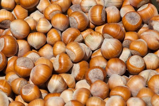 the background consisting of a set of small beautiful nuts