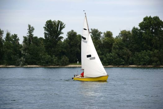 A yellow sailboat sailing in fine weather on the Rhine.