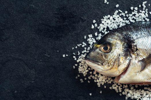 Dorada fish head