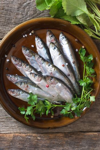 Raw small fishes