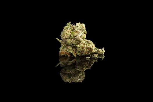 Marijuana bud isolated.