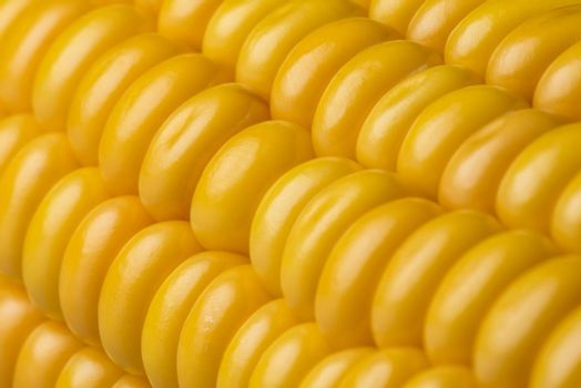 Abstract detail of corn on the cob