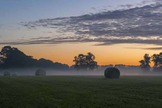 Agriculture packed roles grass in the early morning on a meadow in the Netherlands