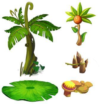 Illustration: Isolated Natural Elements Set 5 - Game Assets Design