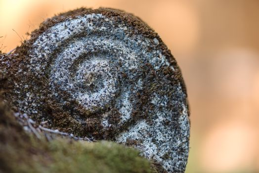 Sprial Rock with Moss