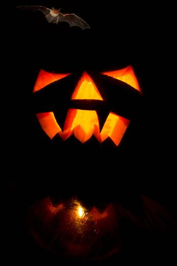 The photograph shows a pumpkin on Halloween