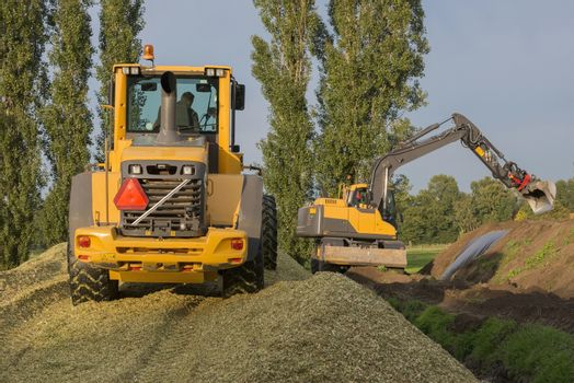 Agriculture shredded corn silage with a yellow shovel and excavator in the Netherlands