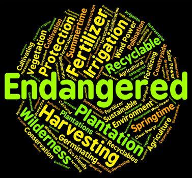 Endangered Word Means Facing Extinction And Endangering