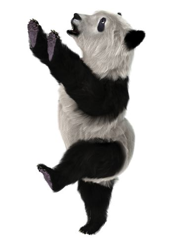 3D digital render of a cute panda bear cub isolated on white background