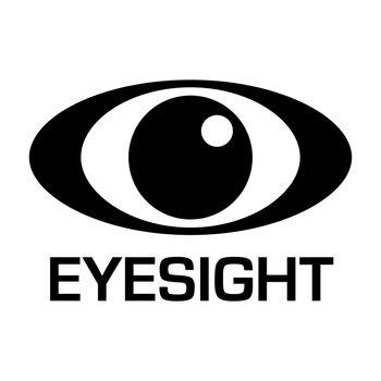 eyesignt icon