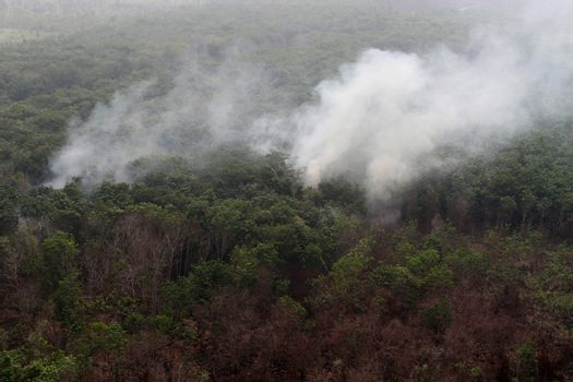 INDONESIA, Kubu Raya: Thick smoke rises up from the fire spot at Kubu Raya district, in West Kalimantan province, on October 21, 2015. Indonesia launched its biggest operation ever to combat fires blanketing Southeast Asia in haze, an official said, with dozens of planes and thousands of troops battling the widespread blazes.