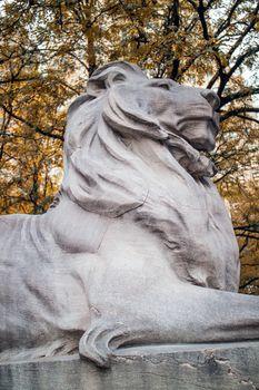 Lion Statue New York Public Library Manhattan
