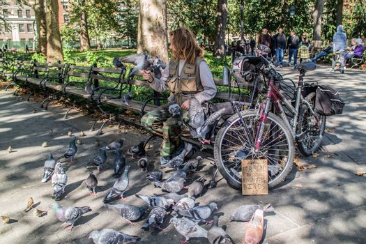 NEW YORK, USA, October 10, 2015: An unidentified lonely man plays with a lot of birds in Washington Square Garden in Manhattan, New York City.