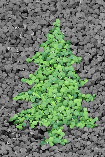 Christmas tree from green leaves with grey background