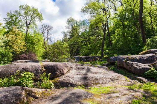 rocky boulders and trees