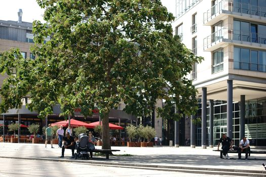 Mainz, Germany - August 22, 2015: The bank of the Rhine promenade on the terraces of Fort Malakoff with passers-by on park benches under a tree on August 22, 2015 in Mainz.