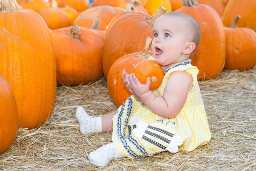 Baby girl holding a pumpkin in a pumpkin patch