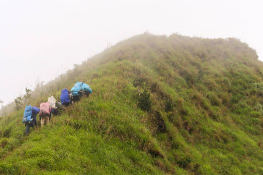 Sherpas walk along on a trail in the forest of  Khao Chang Puak mountain at the Thong Pha Phum National Park, Thailand.