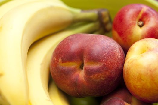 different species of fruit as background