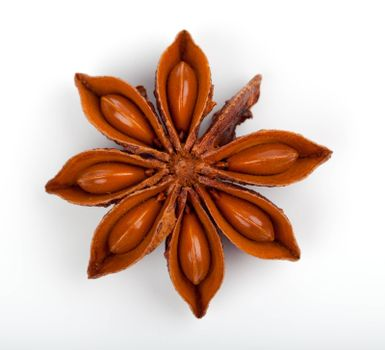 Anise star isolated on a white background. Clipping Path