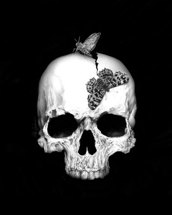 Skull and Soul