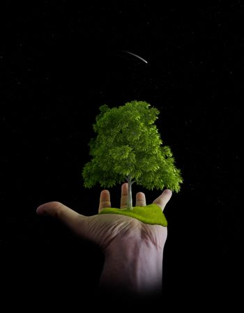 The nature is in the hands of the man - Environment save