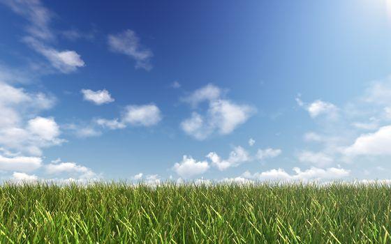 Still sky over green land