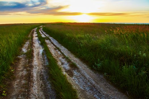 Landscape with rut road in steppe