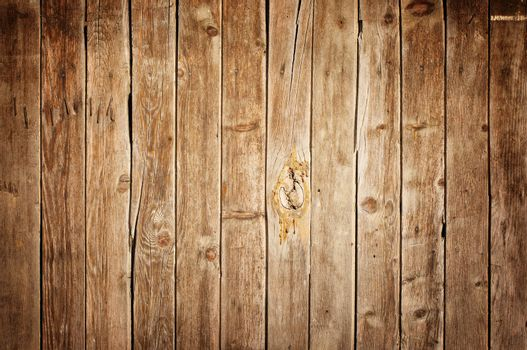 Wooden texture background, natural pattern