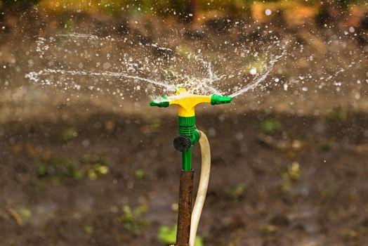 Plastic Home Gardening Irrigation Sprinkler
