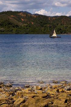 tropical navigable  coastline