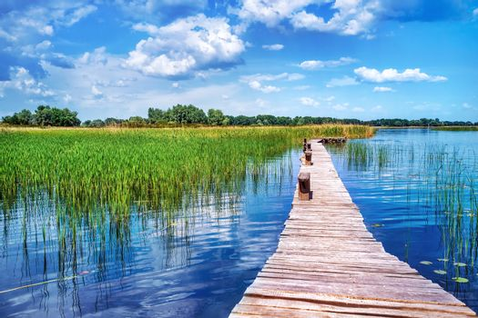Beautiful nature landscape, beauty of countryside places, old wooden bridge across pond, perfect place for summer vacation