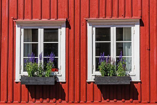 Windows on a wooden facade,
