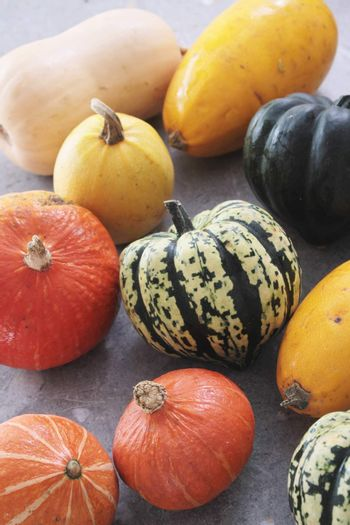 squash vegetable selection