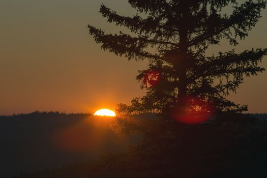 Cypress Hills Sunset
