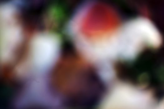 The blurry and abstract top view on colorful autumn leaves and foliage under a tree.