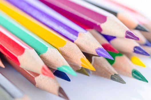hedgehog out of color pencils