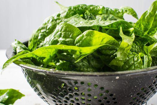 Fresh garden green spinach washed bowl