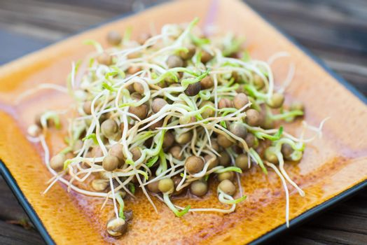 Fresh grown pea sprouts on a plate