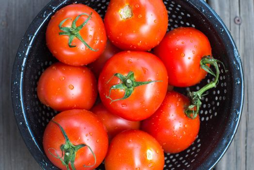 fresh garden red tomatoes healthy