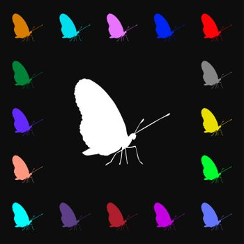 butterfly iconi sign. Lots of colorful symbols for your design.