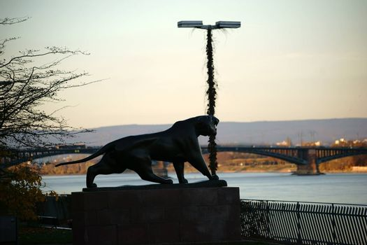 Mainz, Germany - November 10, 2015: The sculpture of Tiger Philipp Harth on the promenade and the banks of the Rhine in Mainz during the sunset on November 10, 2015 Mainz.