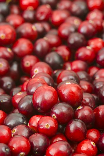 Cranberries in a pot on wooden background.