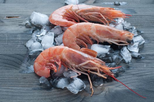Fresh prawns lying on a bed of ice