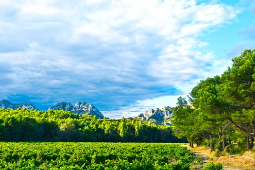 French Provence
